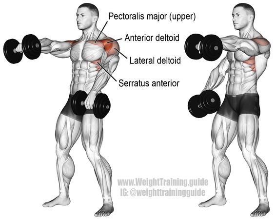 Communication on this topic: How to Do the Chest Press, how-to-do-the-chest-press/