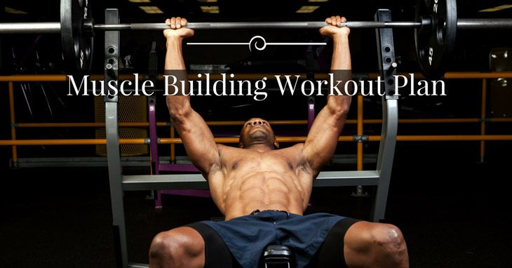 Check Out The Best Muscle Building Workout Plan For The