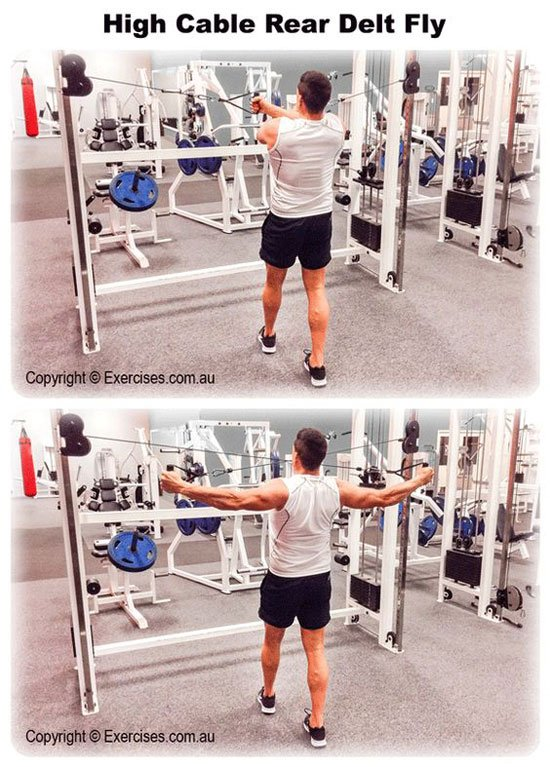 Weakpoint Wednesday: SHOULDERS : bodybuilding